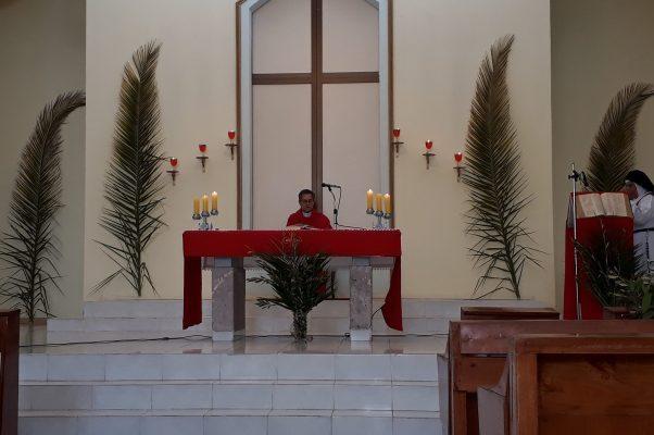 Misa de Semana Santa se seguirá por redes sociales